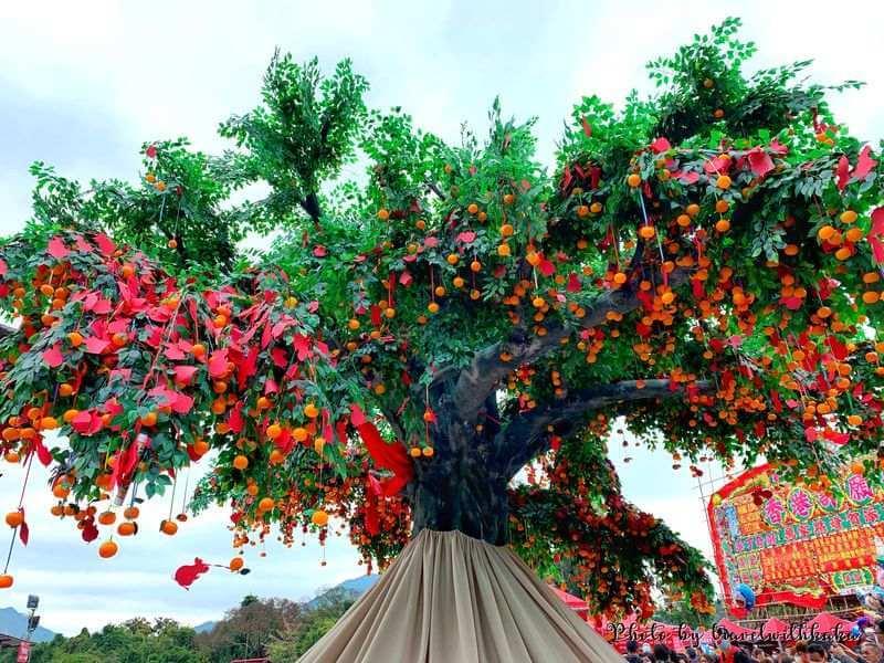 林村許願樹